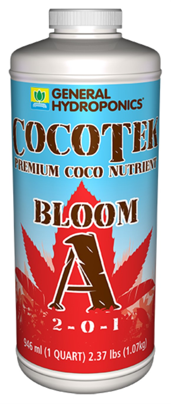 GH Cocotek Bloom A