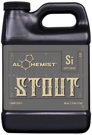 Alchemist Stout Quart (OR Label)