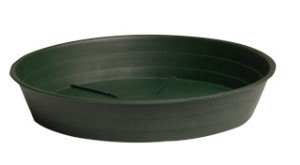 "Green Premium Saucer 16"", pack of 10"