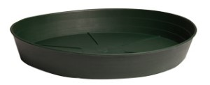 "Green Premium Saucer, 6"", pack of 25"