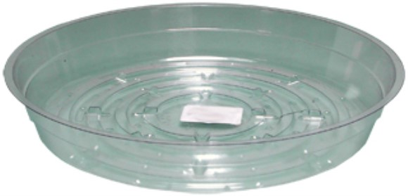 "Clear 8"" Saucer, pack of 25"